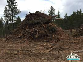 Slash pile from harvesting trees. Westcreek Rd., CO.
